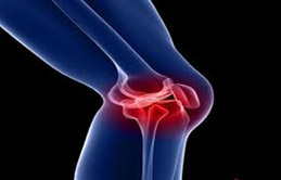 Treatment of  osteoarthritis and joint diseases